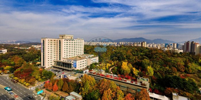 Kyung Hee University Hospital Seoul South Korea